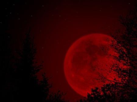 moon187775-selini